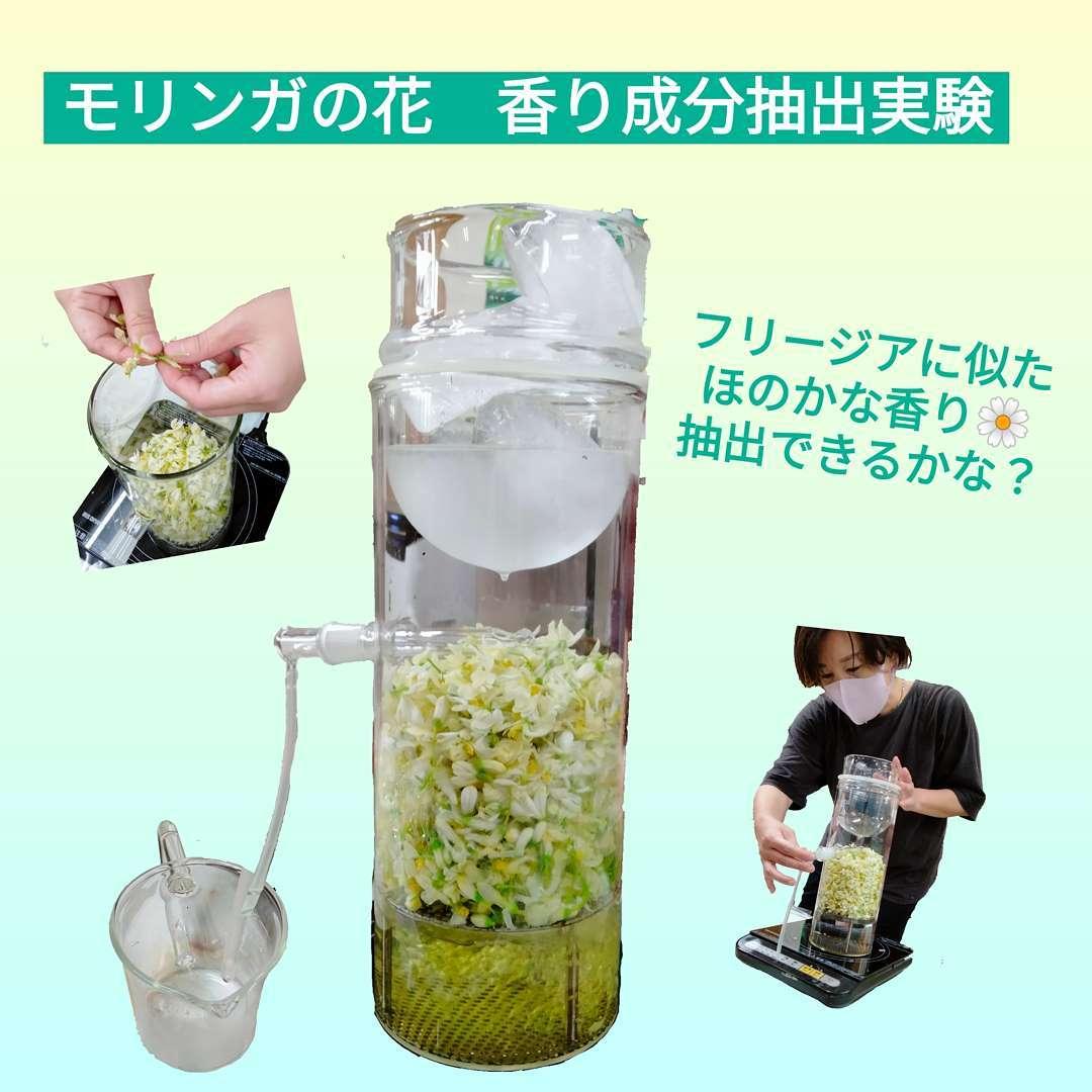 モリンガの花から香り成分を抽出できないか?と実験してみました️これは簡易的な抽出装置。はじめて見ました簡単に言うと 蒸す花の香り成分を含んだ蒸気が出る氷で冷やして水滴を集めるカップに誘導する。です。結果は・・・残念ながらいい香り!とまではいかず!奥の方に微かに香るという感じでしたでも、大満足楽しい時間でした。そして、この際ついでにとこんなもの作ってみましたつづく楽天出店中「永源寺organic」で検索を!滋賀WEB物産展の30%OFFクーポン配布中🎟数がそろそろ少なくなってきてるのでお早めに滋賀県WEB物産展【開催期間】9月1日(水)10:00〜9月31日(木)9:59まで【クーポン内容】・対象商品に使える30%OFFクーポン・利用回数上限 先着30,000回・クーポンはお一人様10回、1注文あたり3個までご利用頂けます。#桑茶#桑パウダー#明日葉茶#明日葉パウダー#モリンガ茶#モリンガパウダー#オーガニック青汁#滋賀県産#近江ハーブ#OMI HERB#薬草#オーガニック青汁#デトックス#アンチエイジング#オーガニック#スーパーフード#薬用植物#永源寺organic#無農薬#有機栽培#楽天#滋賀WEB物産展#美容と健康#ポリフェノール#糖尿病#血糖値#健康茶